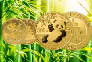 China Panda 2020: Der Panda-Nachwuchs erobert den Edelmetallmarkt